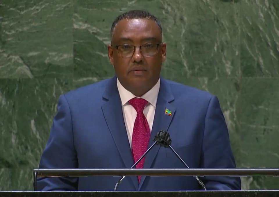 Deputy Prime Minister and Foreign Affairs Minister Demeke Mekonnen